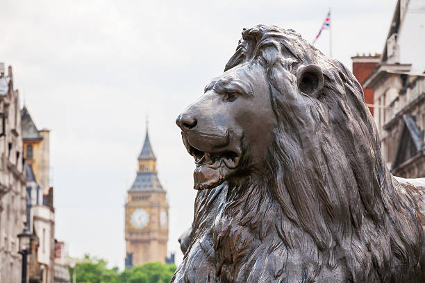Lion in Trafalgar Square. London, England stock photo