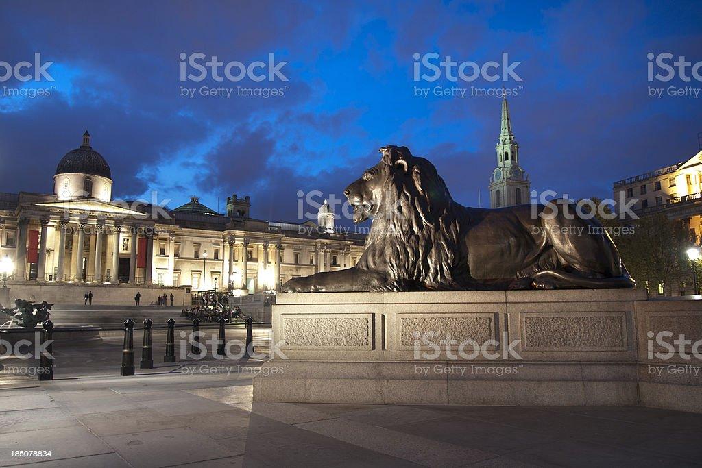 lion in trafalgar square stock photo