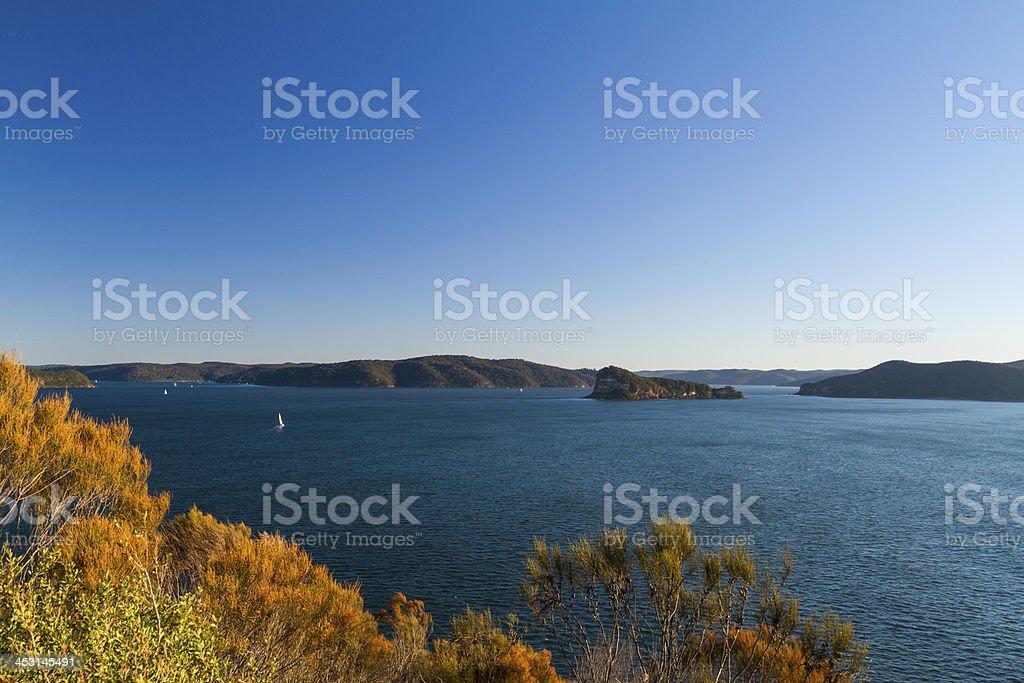 Lion Island royalty-free stock photo