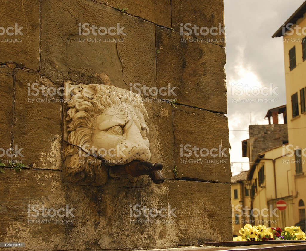 Lion of Laterina royalty-free stock photo