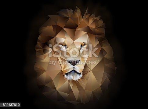 istock Lion polygon geometric 622437610
