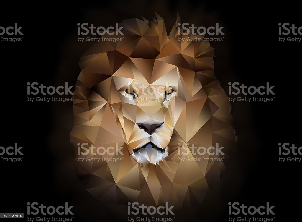 Lion polygon geometric stock photo
