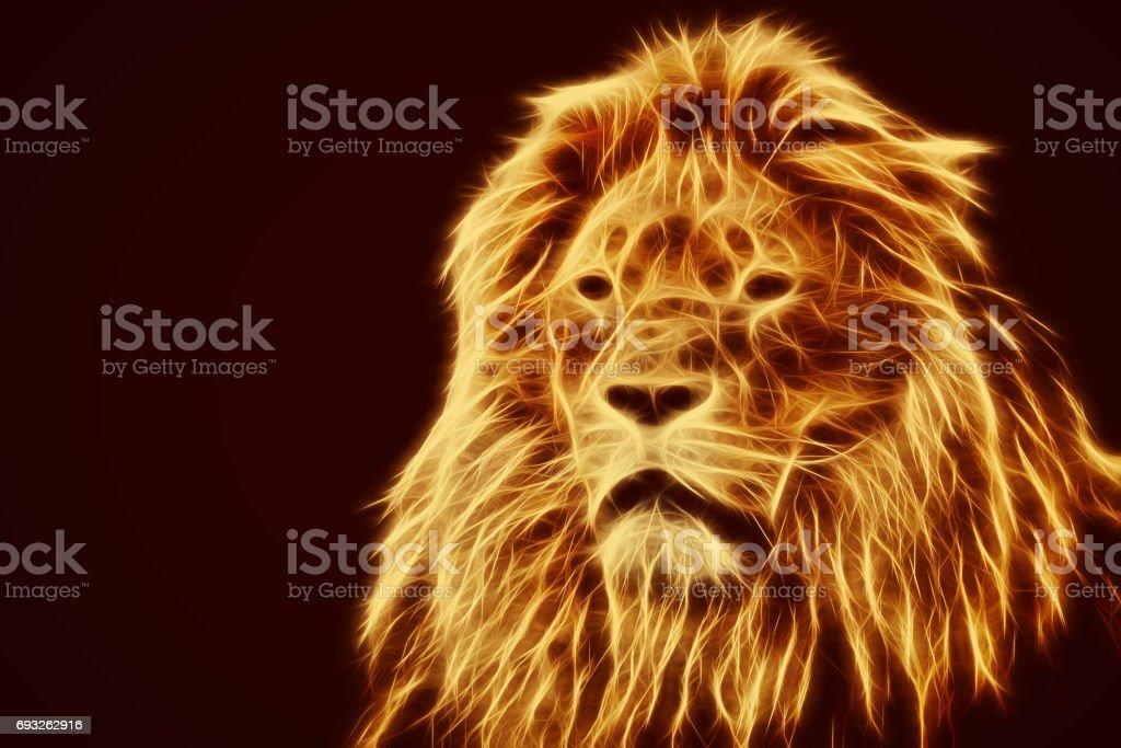 Lion portrait with rich mane on black stock photo
