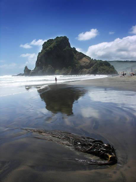 Lion Rock, Piha Beach stock photo