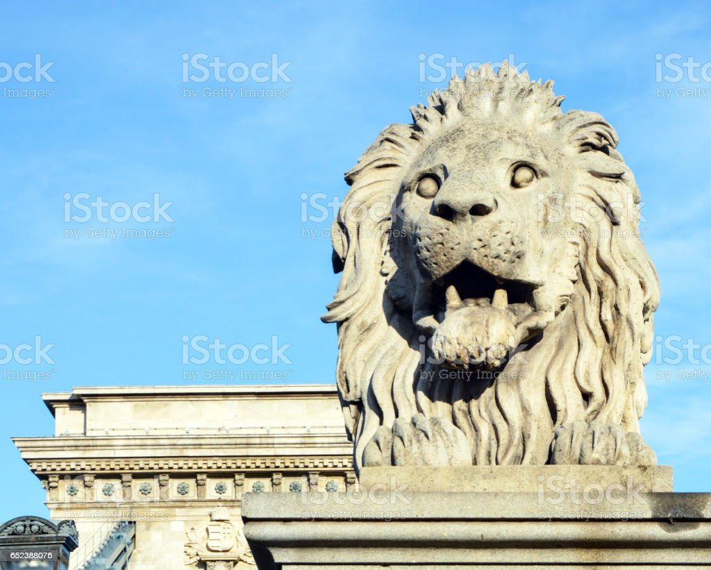 Lion sculpture on the Szechenyi Chain Bridge in Budapest - Hungary stock photo