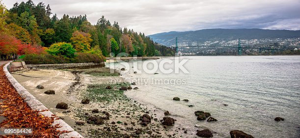 istock Lions Gate Bridge - View from Stanley Park 699564426