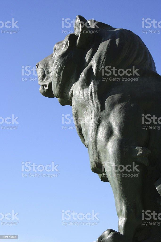 Lions head royalty-free stock photo
