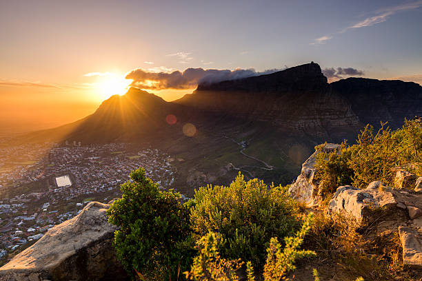 lions head viewpoint 8 - cape peninsula stock pictures, royalty-free photos & images
