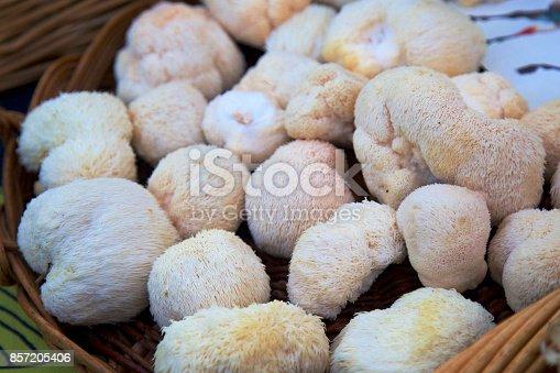 a basket of Lion's mane mushrooms at the farmer's market