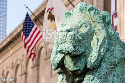 istock Lions of Chicago 487178841