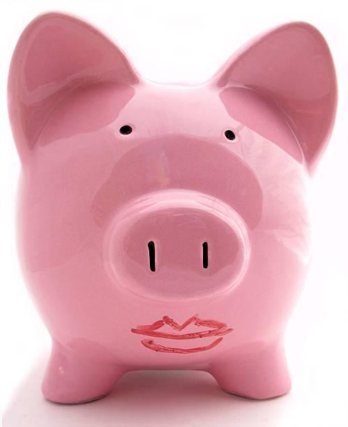 Lipstick on a Pig stock photo