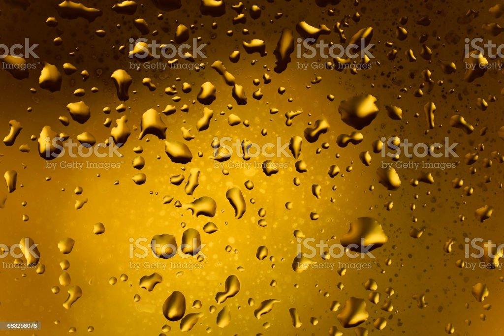 Liquid Gold foto de stock royalty-free