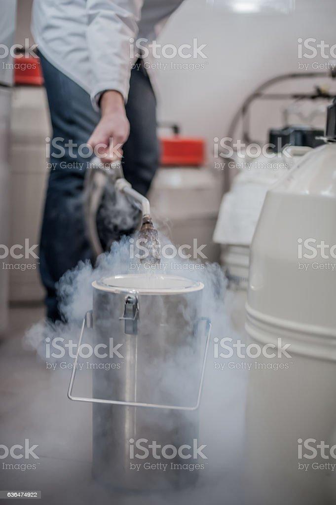 Liquid nitrogen technician fills cryogenic container stock photo