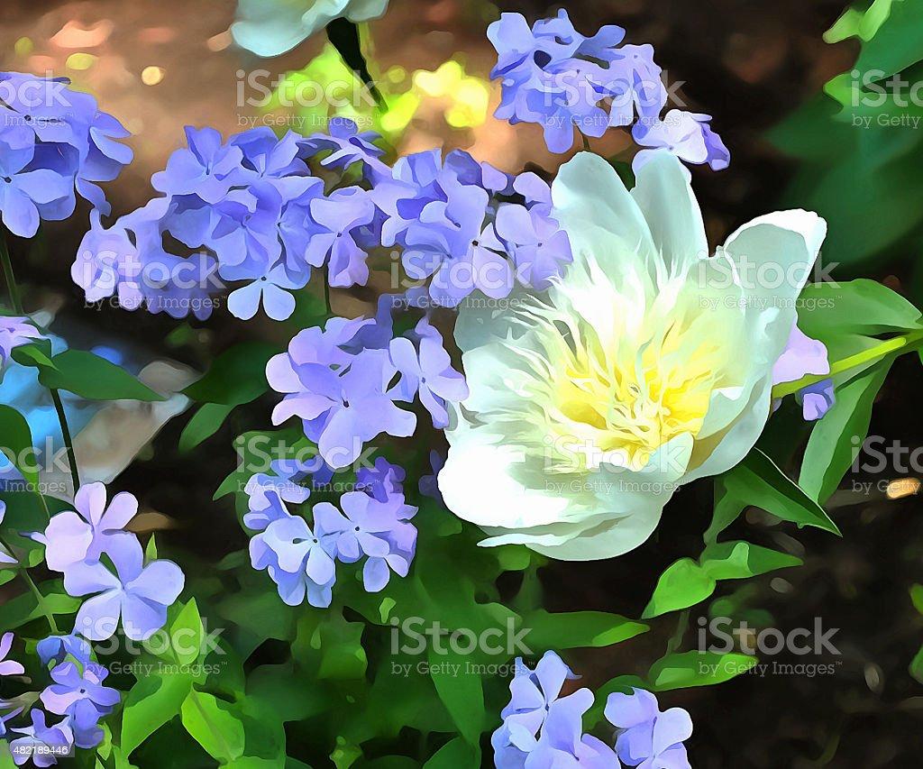 Lisa's spring garden stock photo