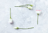 Lisianthus Flowers on gray Marble Background