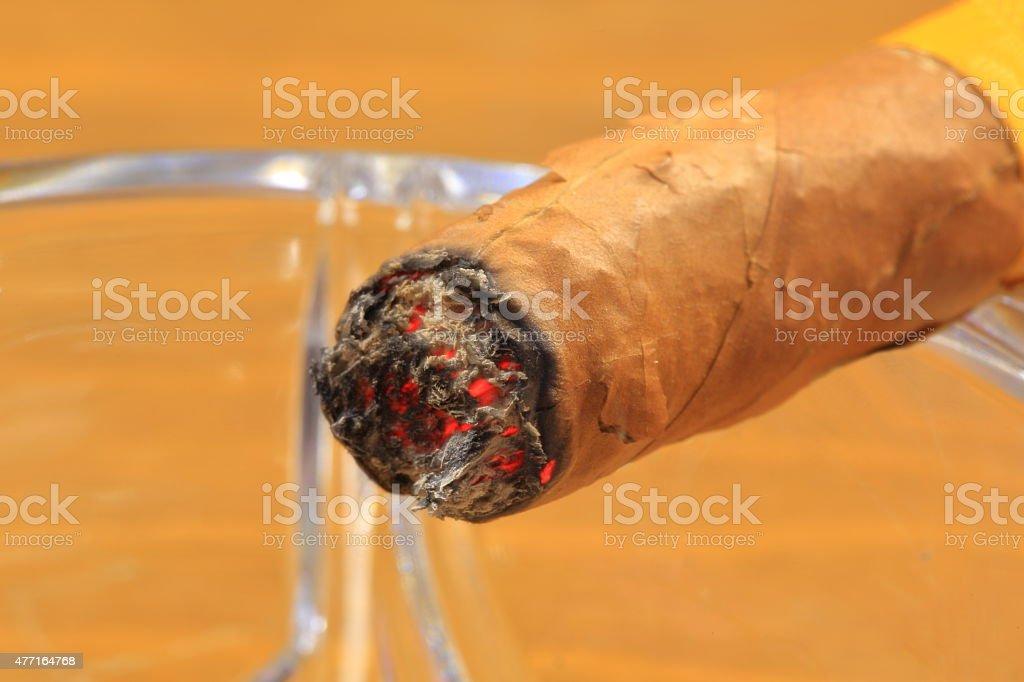 Lit Cigar Closeu-up stock photo