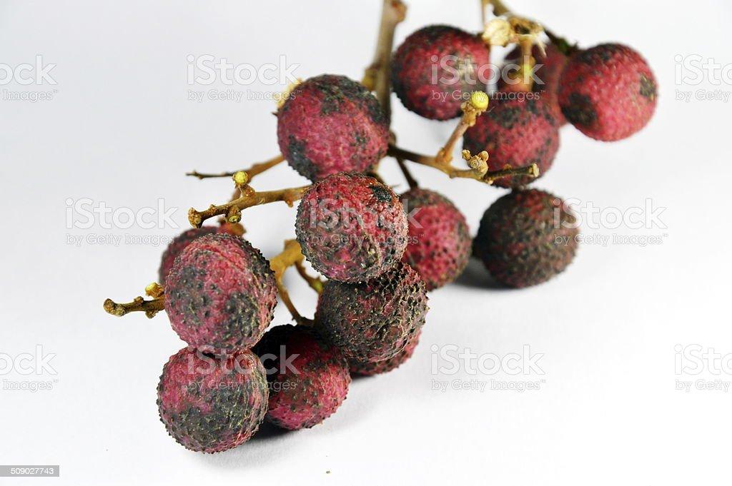 litchi Thai fruits stock photo