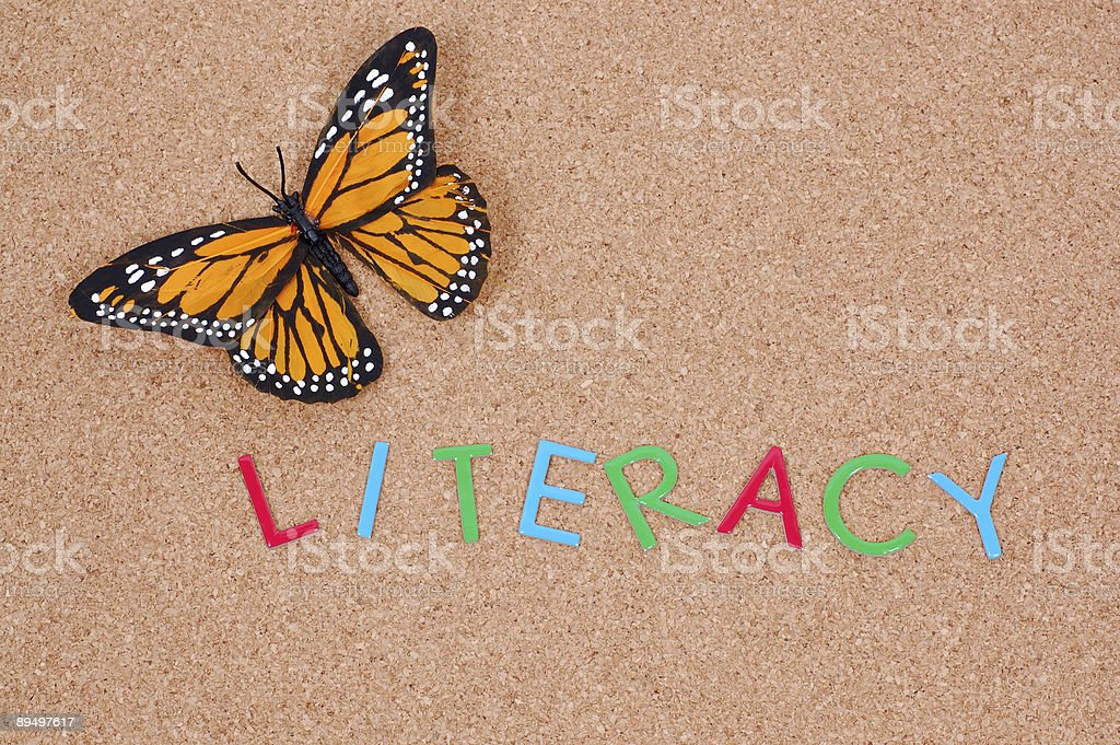 Literacy on Corkboard royalty free stockfoto