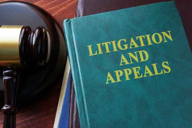 Litigation and appeals title on a book and gavel. stock photo