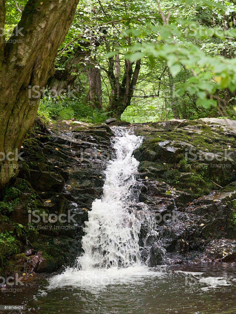 litle waterfall stock photo