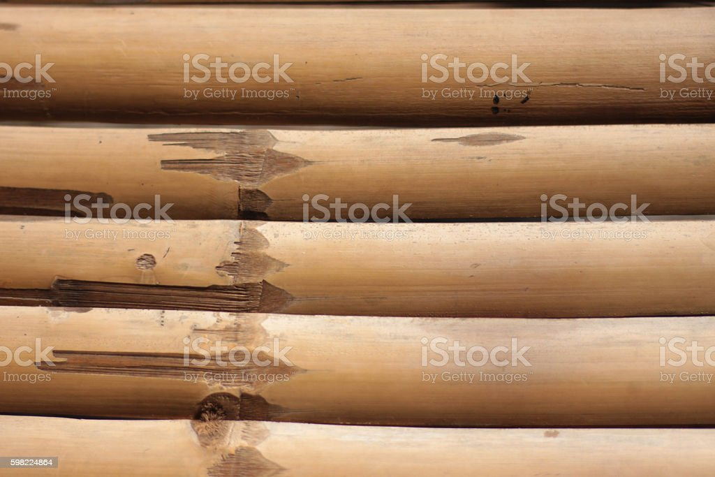 Litter bamboo use for background foto royalty-free