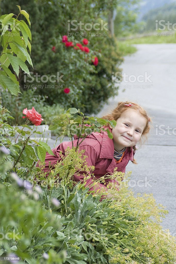 Littl girl playing hide and seek royalty-free stock photo
