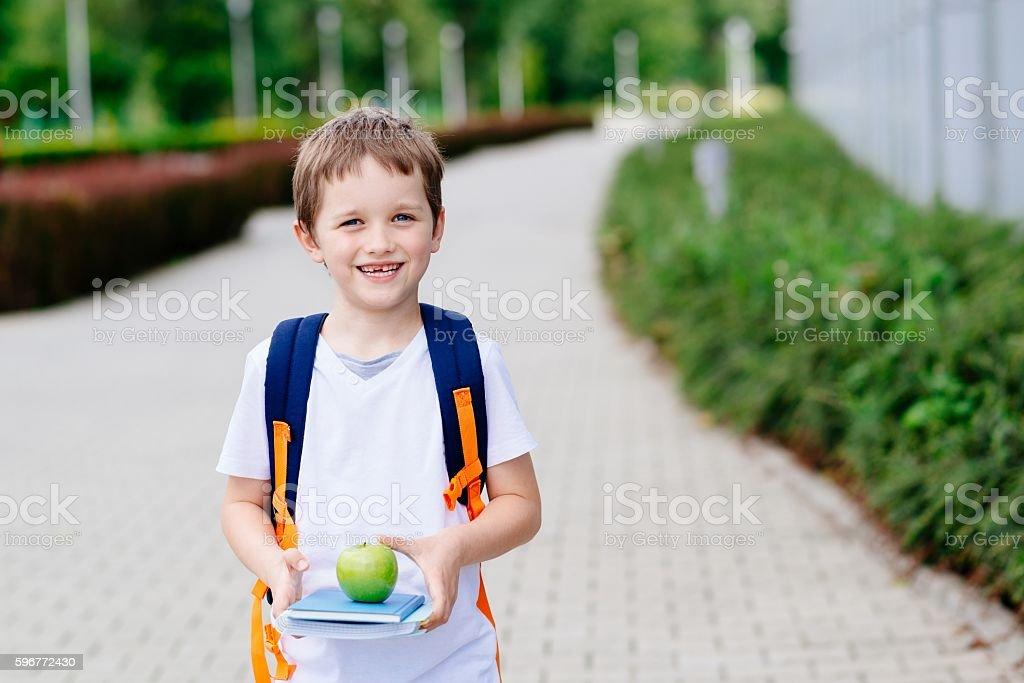 Little 7 years old boy with books and apple stock photo