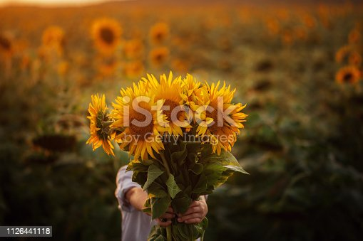 Little adorable kid boy holding bouquet of sunflowers in summer day. Child giving flowers