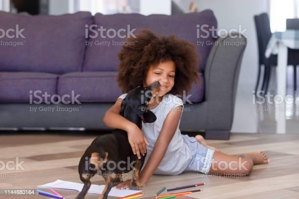 Little african girl playing with dachshund puppy on warm floor picture id1144680164?b=1&k=6&m=1144680164&s=612x612&h=xg lxeazt muwj4pzy21qarzwvun8yw9gcu4qu3fnky=