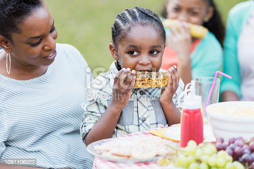 1091098026istockphoto Little African-American boy on mother's lap at cookout 1091106022
