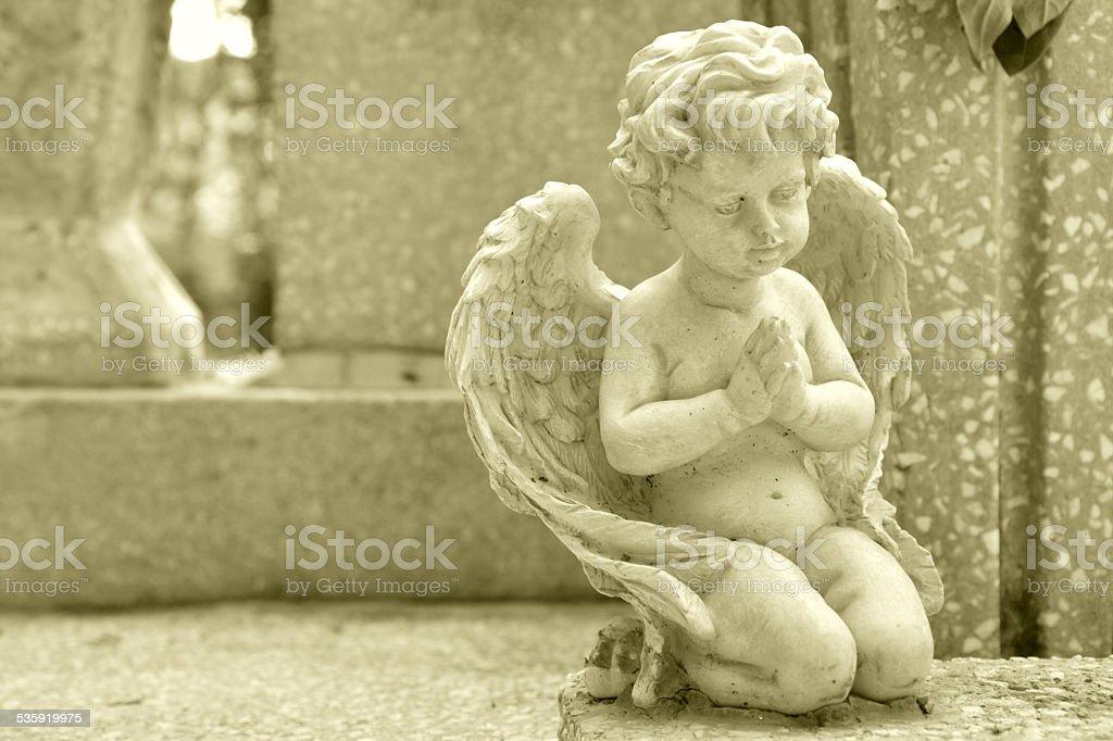 little angel stock photo