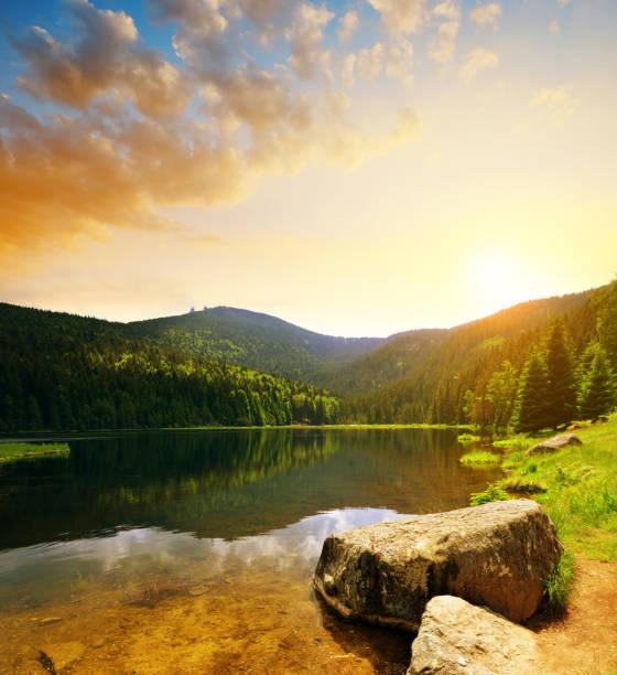 little arbersee lake, tyskland. - bayerischer wald bildbanksfoton och bilder