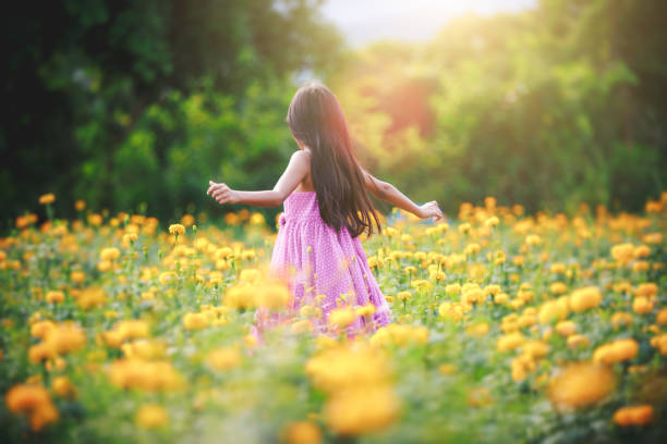 Little asian girl in flower fields stock photo
