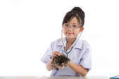 istock Little asian girl playing veterinarian with kitten 480599474