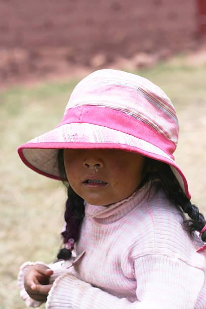 Little aymara girl stock photo