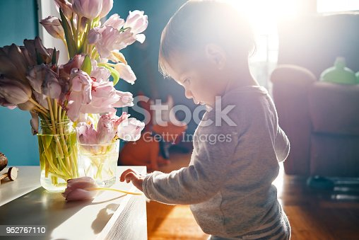 istock little baby biologist 952767110