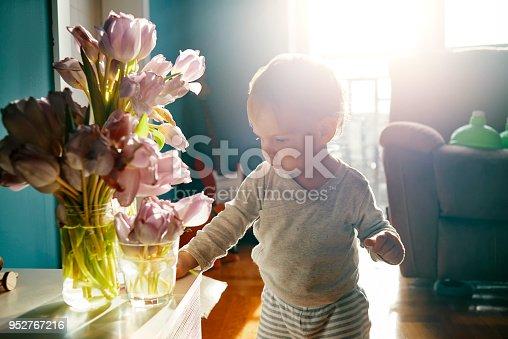 istock little baby biologist 952767216