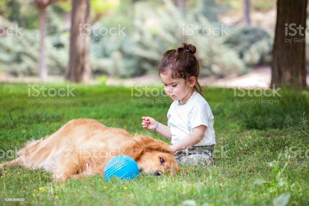 Küçük bebek kız ve köpeği genel parkta vakit. stok fotoğrafı