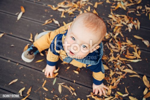 istock Little baby playing with autumn leaves on a wooden floor 508619288