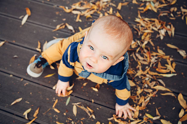 little baby playing with autumn leaves on a wooden floor - baby boys stock photos and pictures