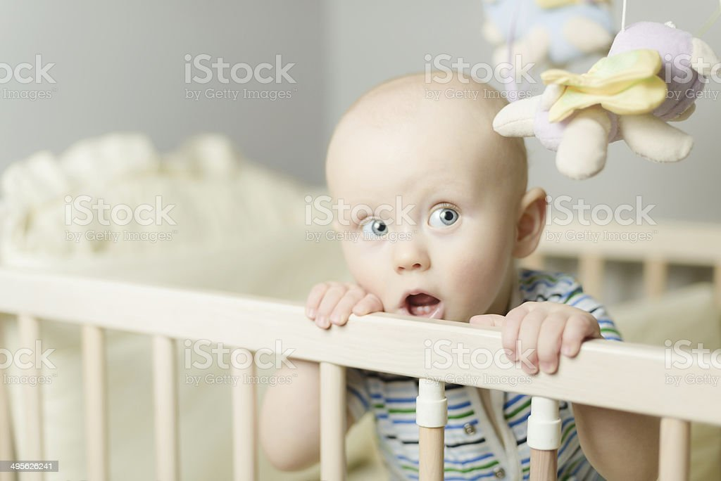 little baby standing in the crib stock photo
