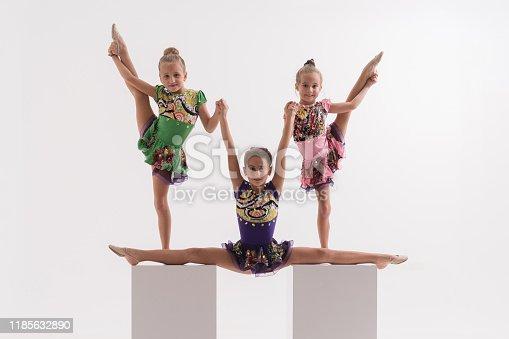 466300721 istock photo Little ballerinas in dance studio 1185632890