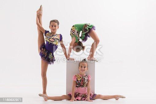 466300721 istock photo Little ballerinas in dance studio 1185632971