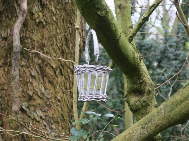 weinig mand dat op een tak van een boom in de tuin hangt foto