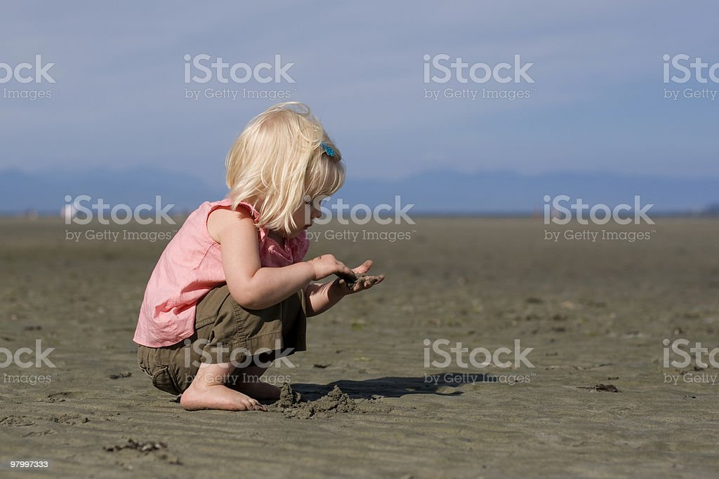 Little Beachcomber royalty-free stock photo
