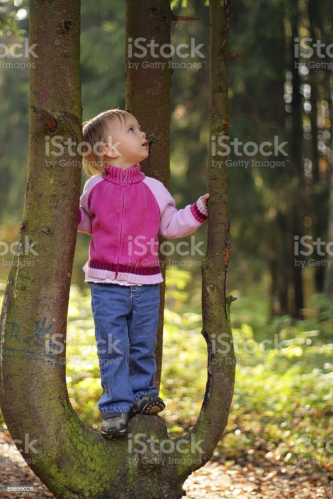 Little beauty girl on tree royalty-free stock photo