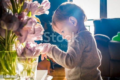 istock little biologist 1128018043