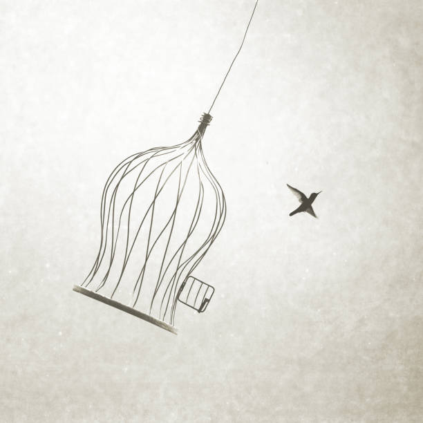 little bird flying out of bird cage, think outside the box stock photo