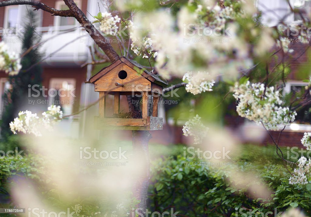 Little Birdhouse in Spring royalty-free stock photo