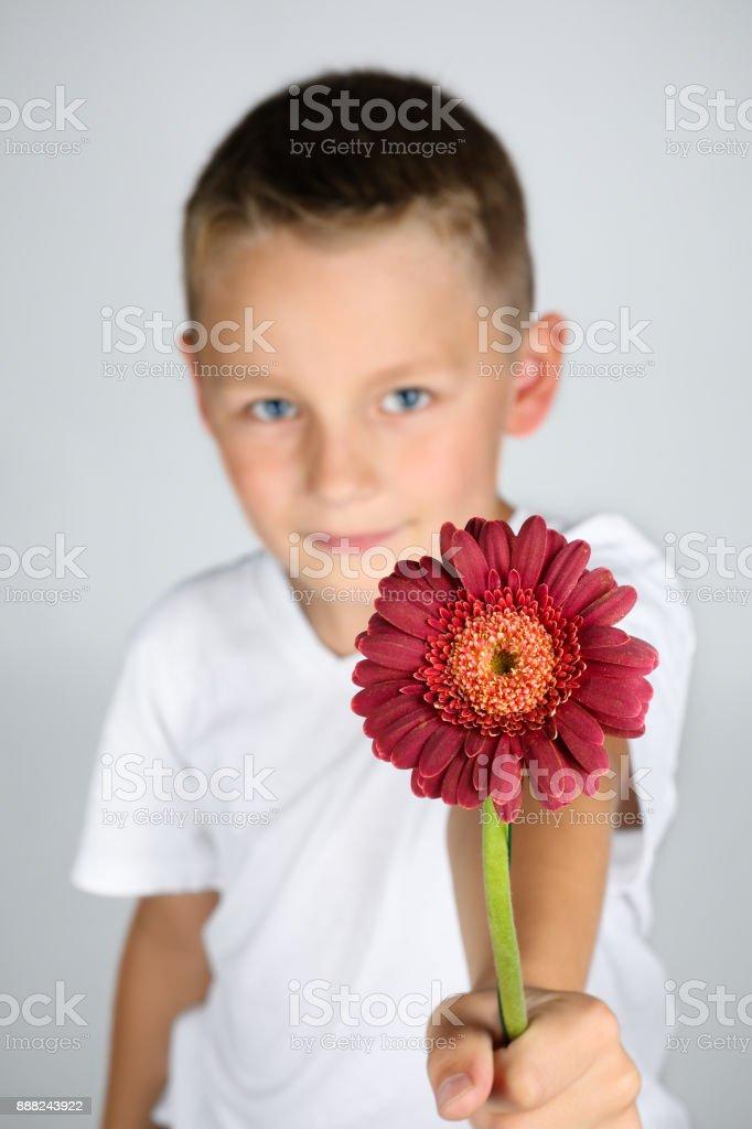 a3bf3488e Foto de Menino Loiro Está Segurando Uma Flor Vermelha Na Mão e mais ...